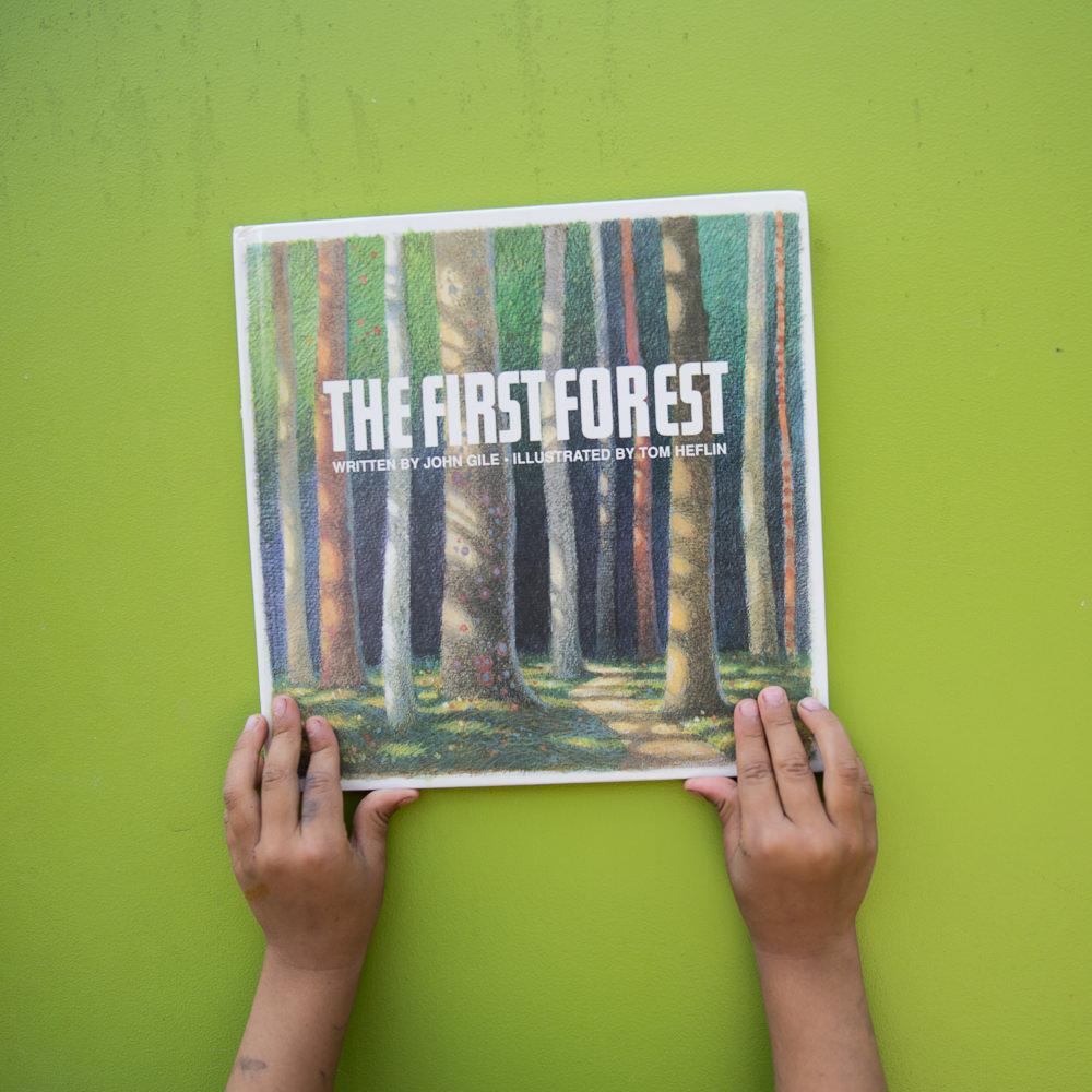 first-forest.jpg