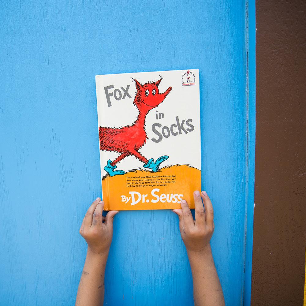 fox-in-socks.jpg