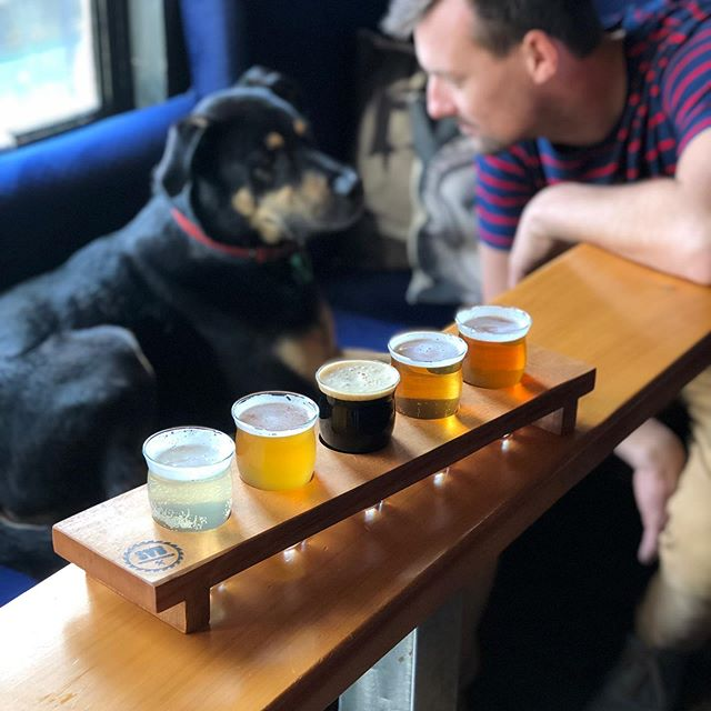 Can't decide which brew's for you? Enjoy the delight of a tasting beer flight. Enough for you and your best friend. Mad props to @svbwoodworks for the custom trays. #flightoffancy #dogshavethebestbanter
