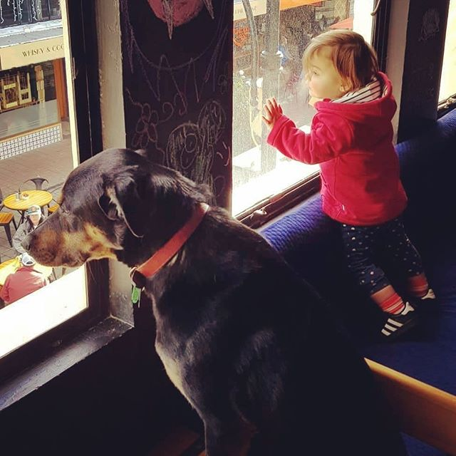 Just a couple of regulars watching the world go by. Caption this pic and be in to win a $40 Institution voucher! Entries close 4th July. #captioncontest