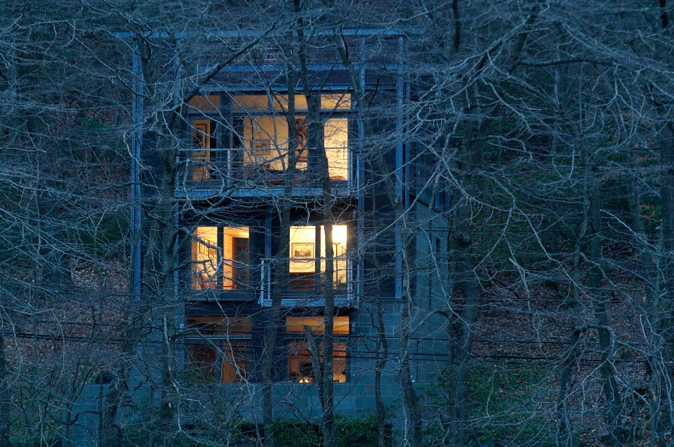 Tree House  / Cold Spring Harbor, NY