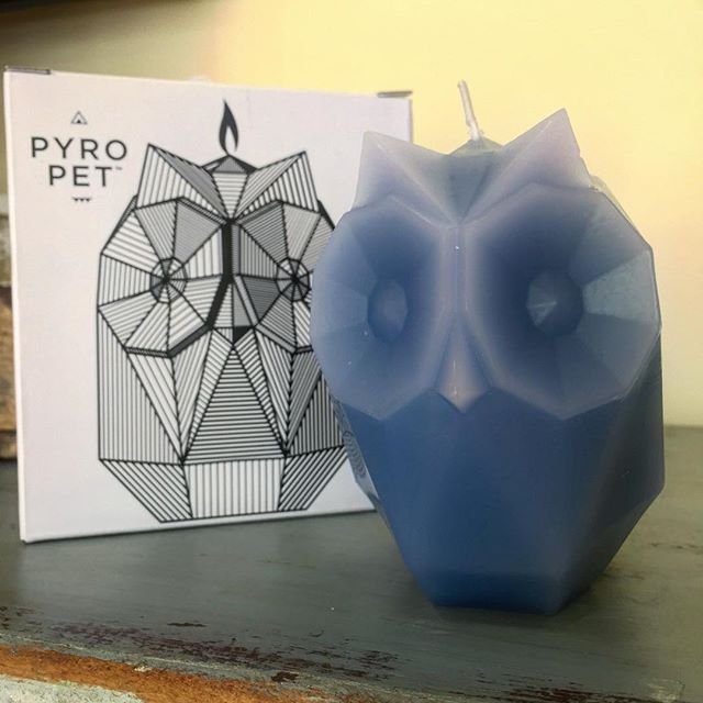 Pyro Pets are a real hoot 🦉 Not only are these candles adorable, they burn down to reveal a skeleton statue underneath! . . . . www.goldenmoongallery.com #handmade #candles #pyropet #ugla #owl #skeleton #supportsmallbusiness #shopsmall #giftideas #goldenmoongallery #sanmateo #bayarea #iceland #madebyhand #cute #creative