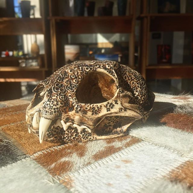 So. Many. Details. 🌙 Hope everyone is gearing up for a great weekend! . . . .  www.goldenmoongallery.com #handmade #handcarved #skulls #ethical #supporthandmade #jasonborders #goldenmoongallery #momentomori #shopsmall #bobcat #supportsmallbusiness