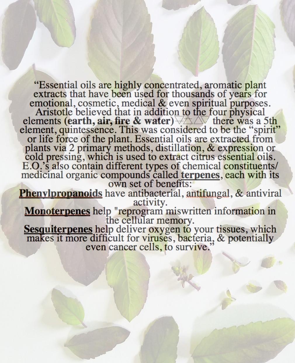 essential oil 3.jpg