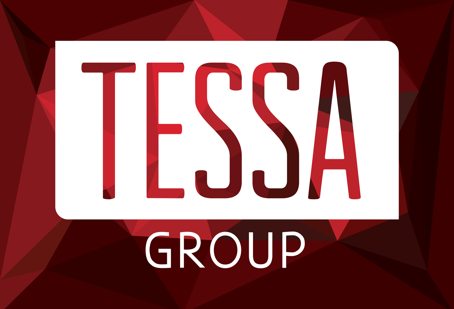 Tessa Group Logo and Pattern