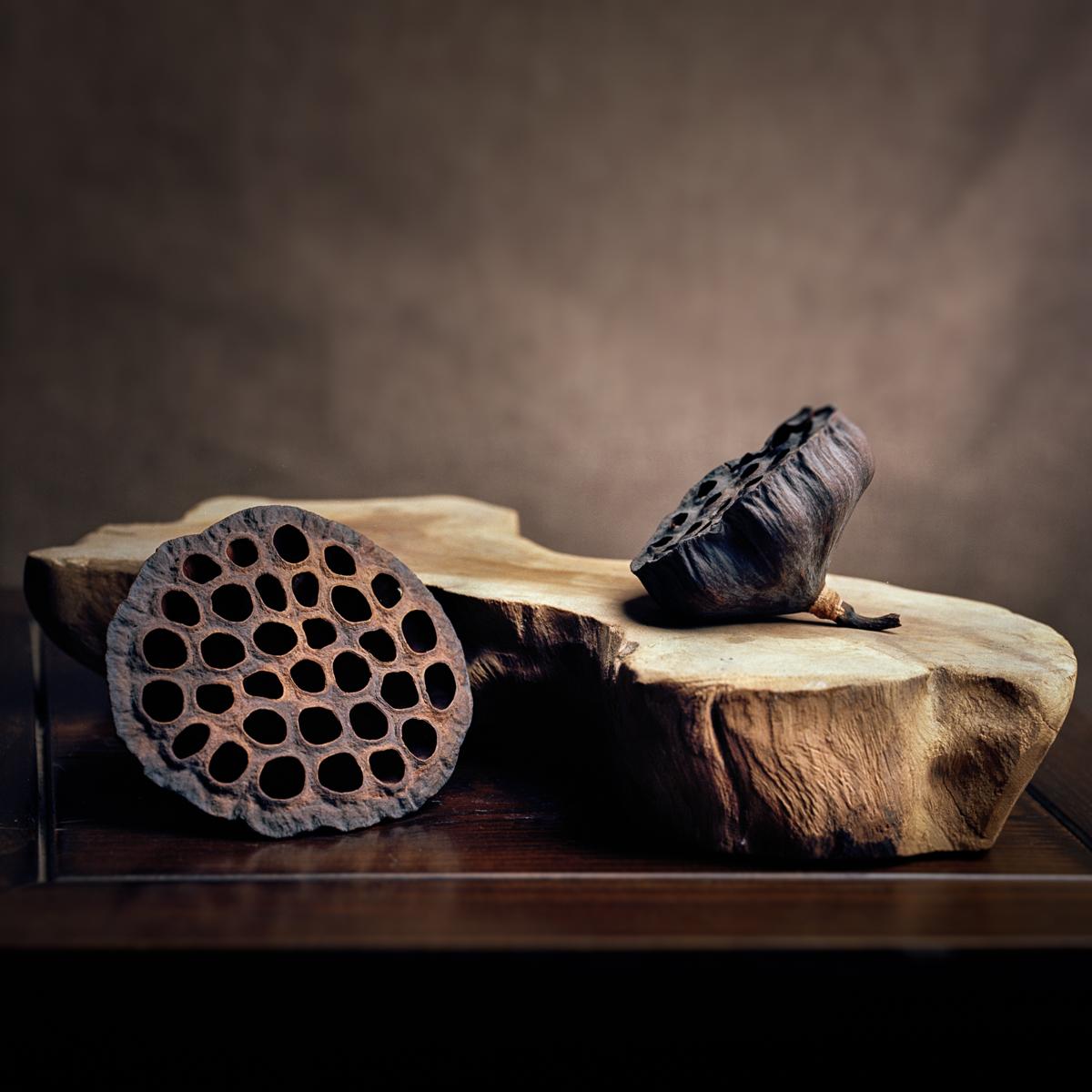 Still Life: Lotus Pods