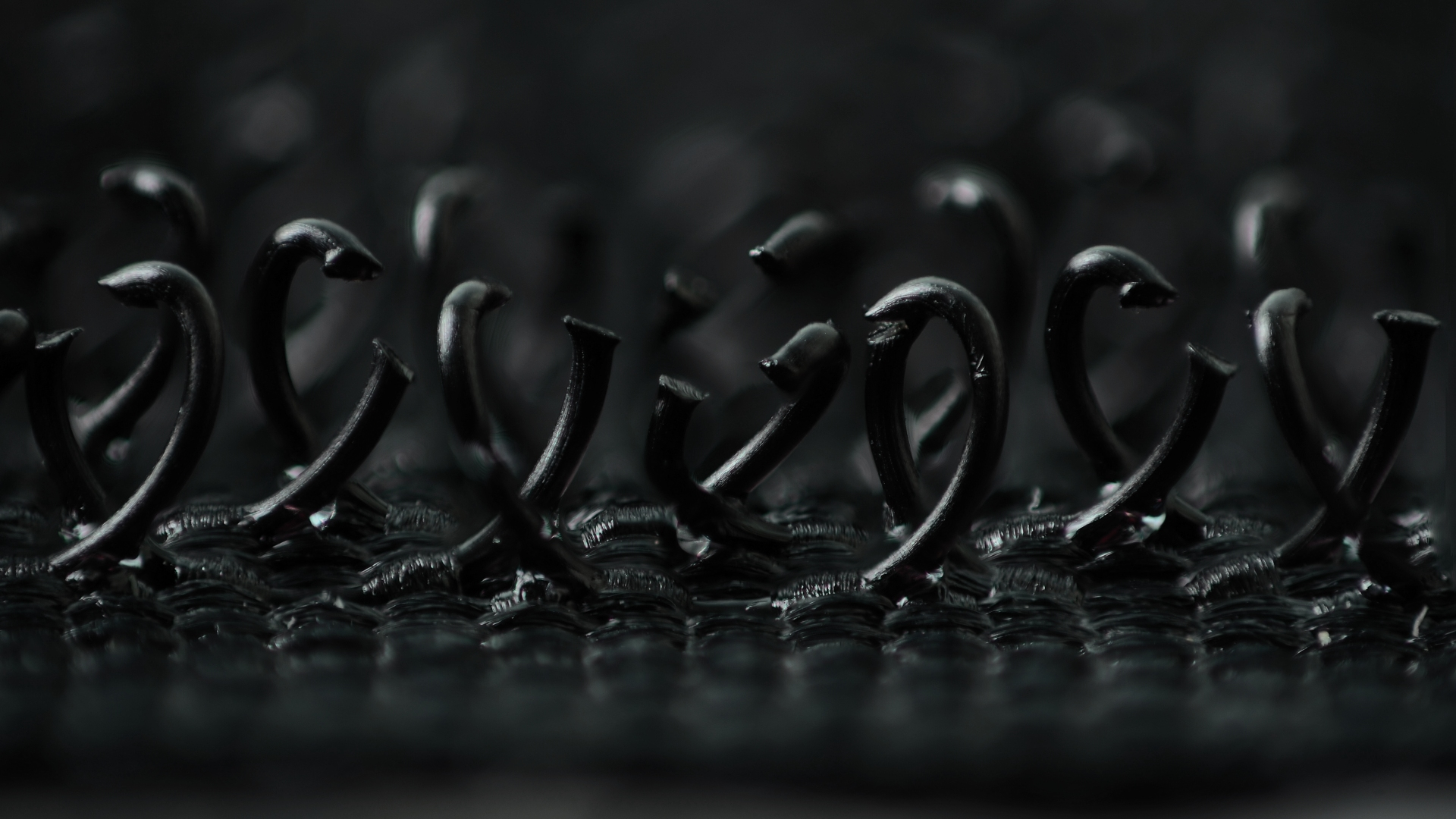 Hook_and_loop_fastener_-_macro_photograph_of__hooks_.jpg
