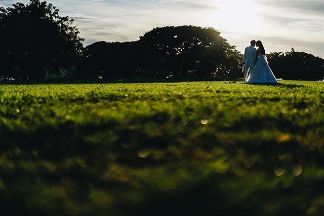 You're my sunshine in my darkest days. My better half, my saving grace. @jasonaldean . . #プレ花嫁 #ハワイ婚 #ハワイウェディング #日本中のプレ花嫁さんと繋がりたい #ハネムーンフォト #写真好きな人と繋がりたい #前撮り #後撮り #ハワイフォトツアー #ハワイ挙式 #ハワイカメラマン #ハワイフォトグラファー #ナチュラルウェディング #ハワイウェディングフォト #海外ウェディング #結婚準備