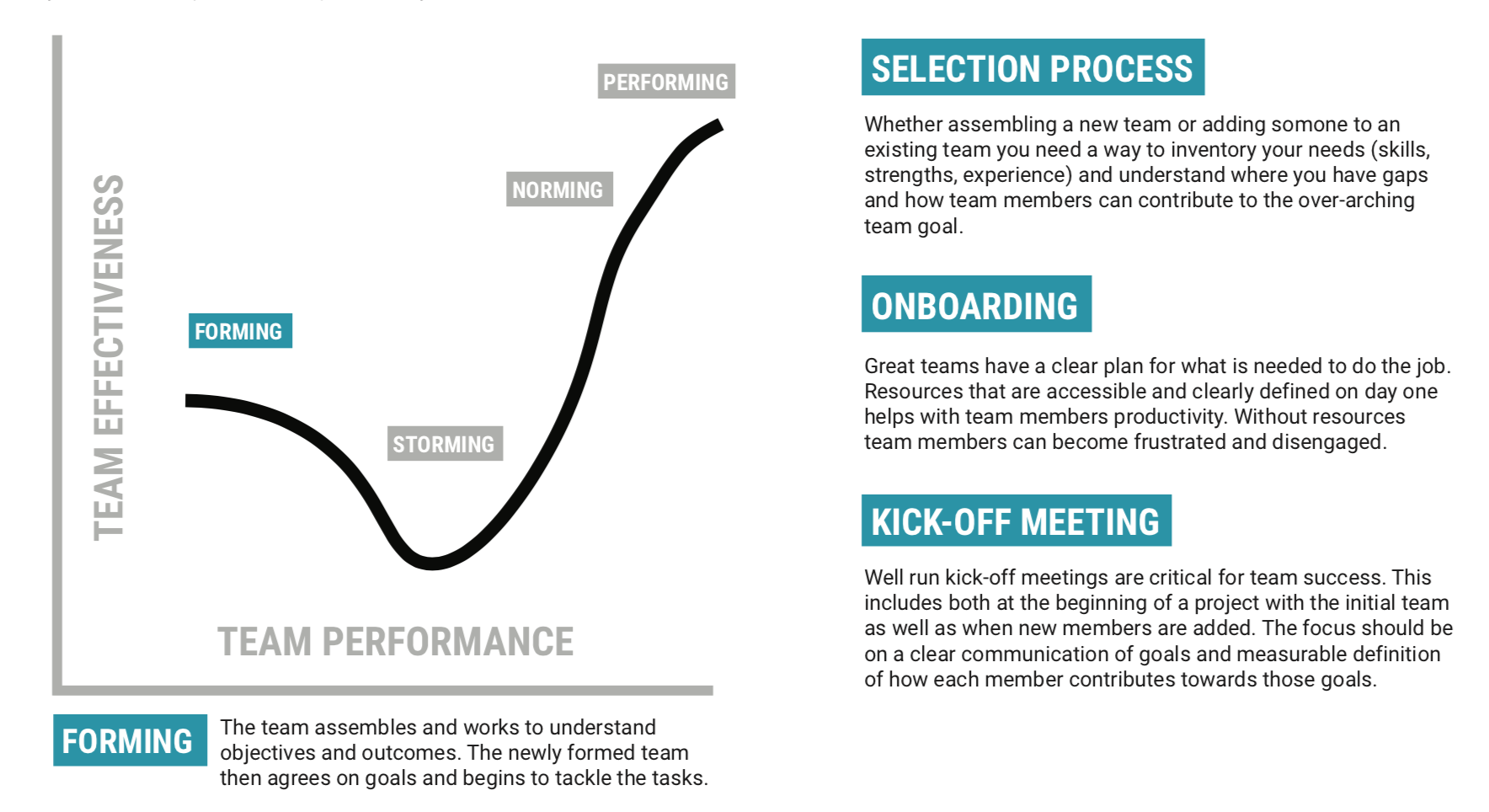 """Image with a graph showing that """"forming"""" is the first stage of team development"""
