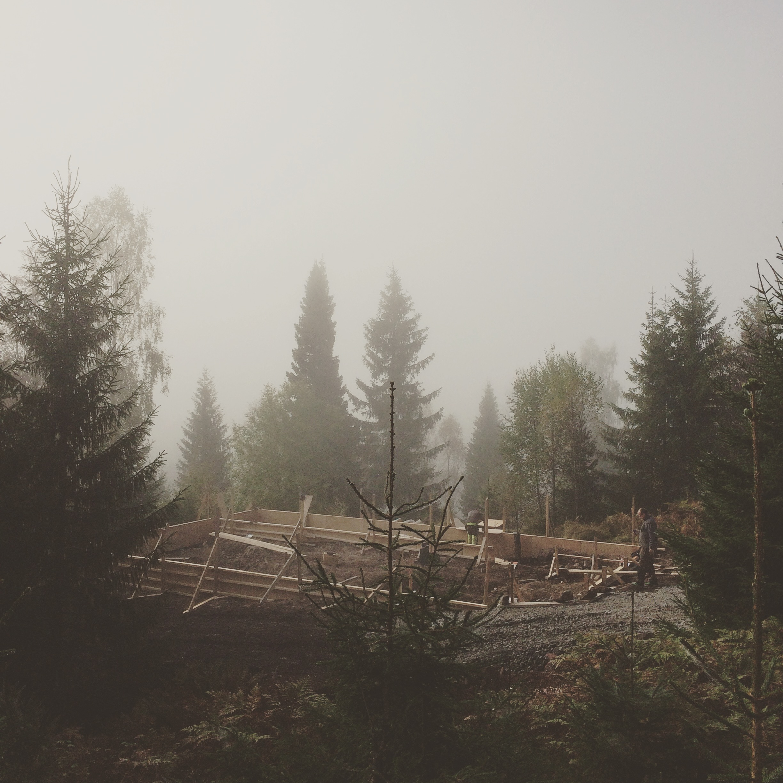 09/2016 - Nå skjer det ting i skogen ved Damtjern.