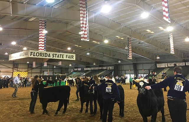 Students in FFA and 4-H have been working hard at their projects and exhibitions all year! Stop by any of the livestock shows, tents, and expo areas to learn more from these dedicated kids as they spread a positive message of responsibility and animal stewardship! 🐄🐐🐖🐓🐇🐕🐾