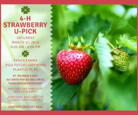 4-H Strawberry U Pick 2018 Final Print.png