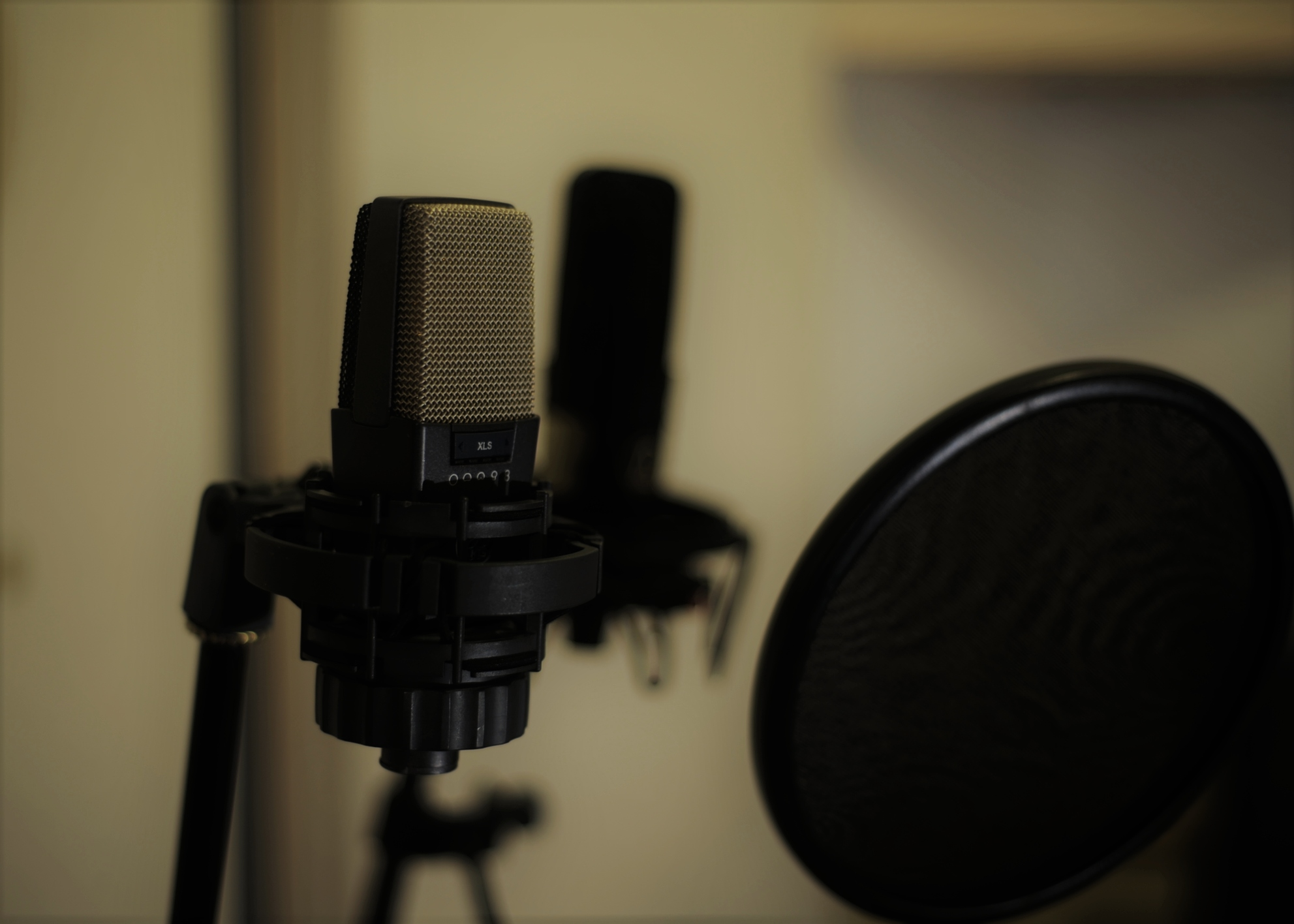 Quality Mics at your disposal