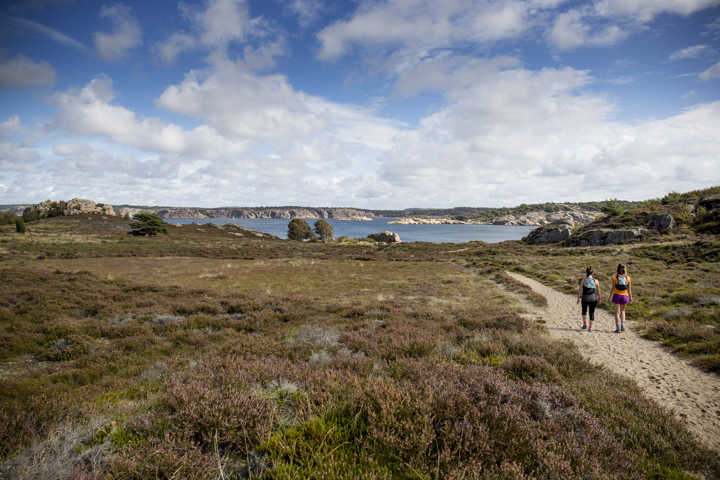 Vast, beautiful landscapes with scrubland, forest and pink granite rocks next to a clear blue sea