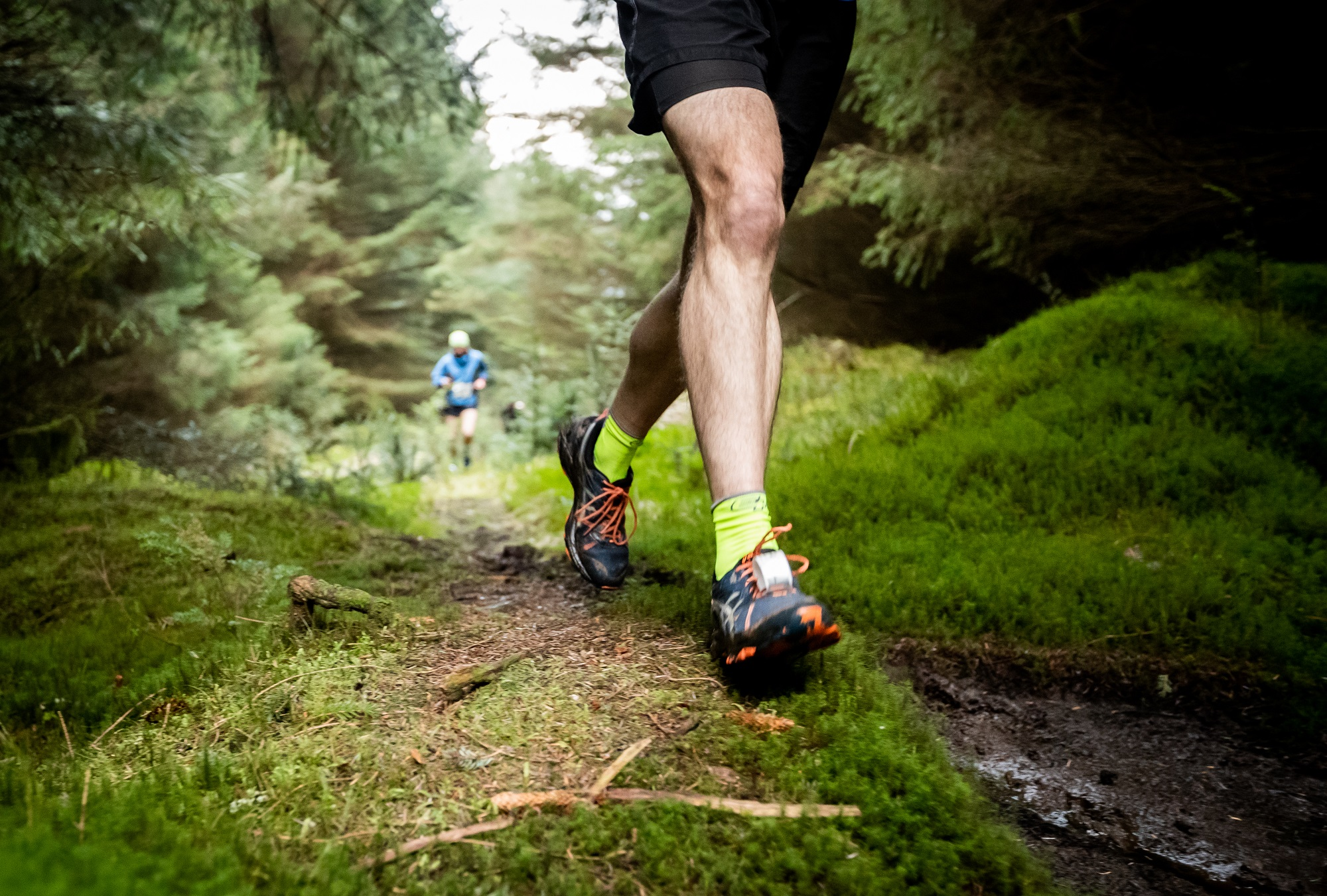 Olympian Steve Cram to run Hamsterley Forest trail race — Trail ...