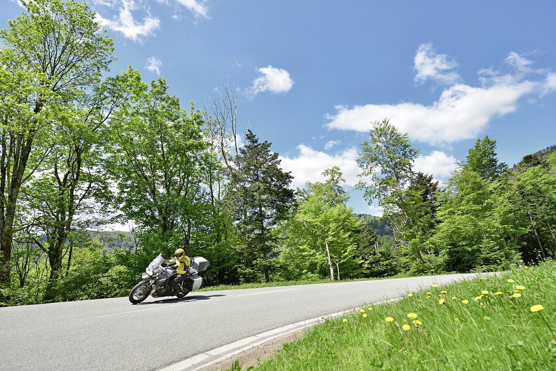 Vosges021.jpg