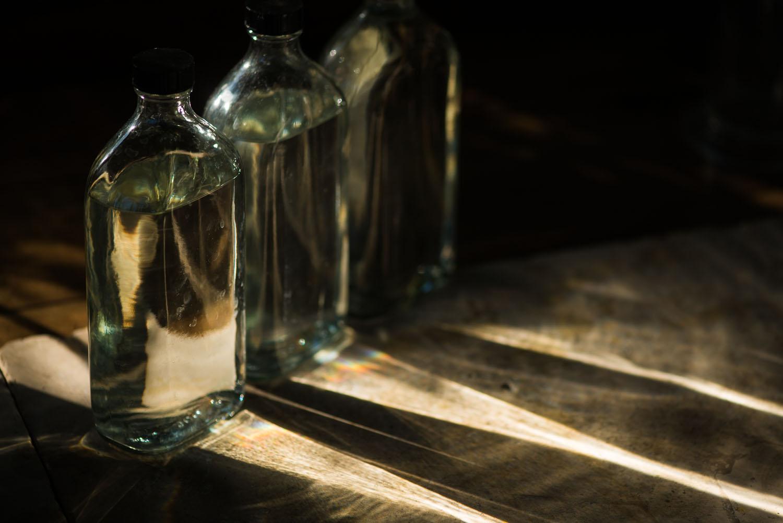 Capreolus-distillery-Eaux-Eau-De-Vie-Gin-Schnapps-Brandy-Brandies-Vies-production-fruit-distilling-garden-tiger-botanicals-plants-fruit-fruits-009.jpg