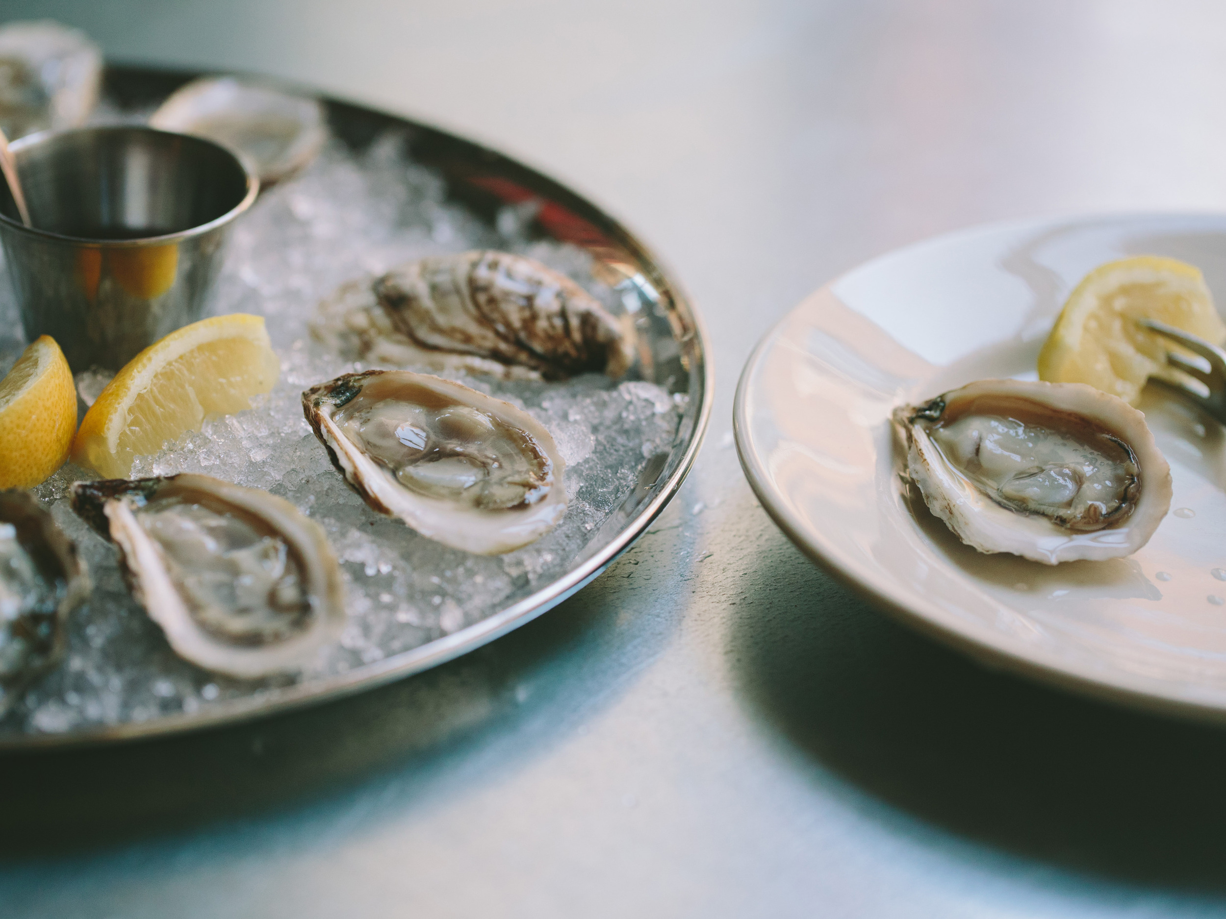FRANKLIN OYSTER HOUSE REFORMATTED-16