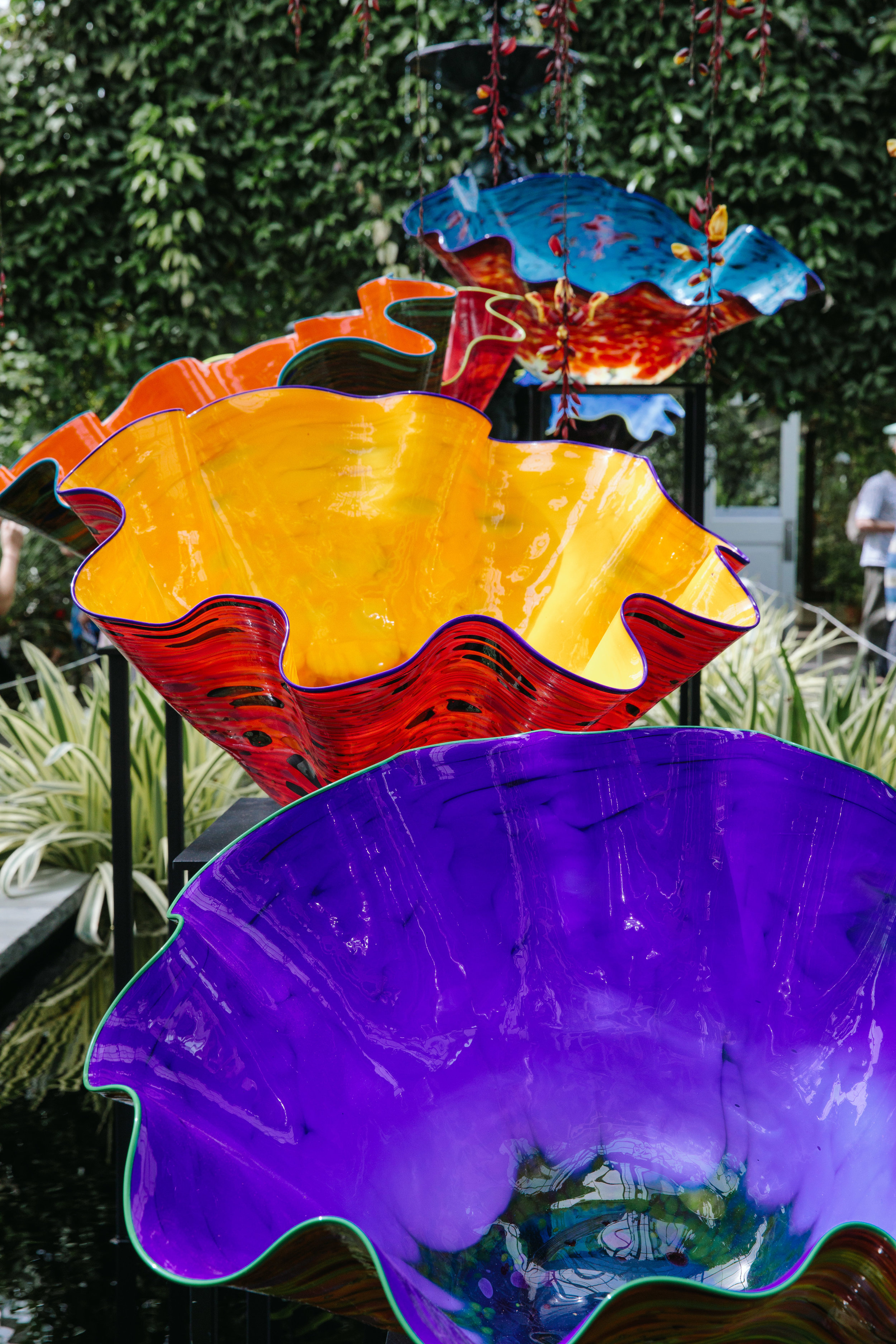 CHIHULY NY BOTANICAL GARDEN_BRIAN SAMUELS_AUGUST 2017-7160.jpg