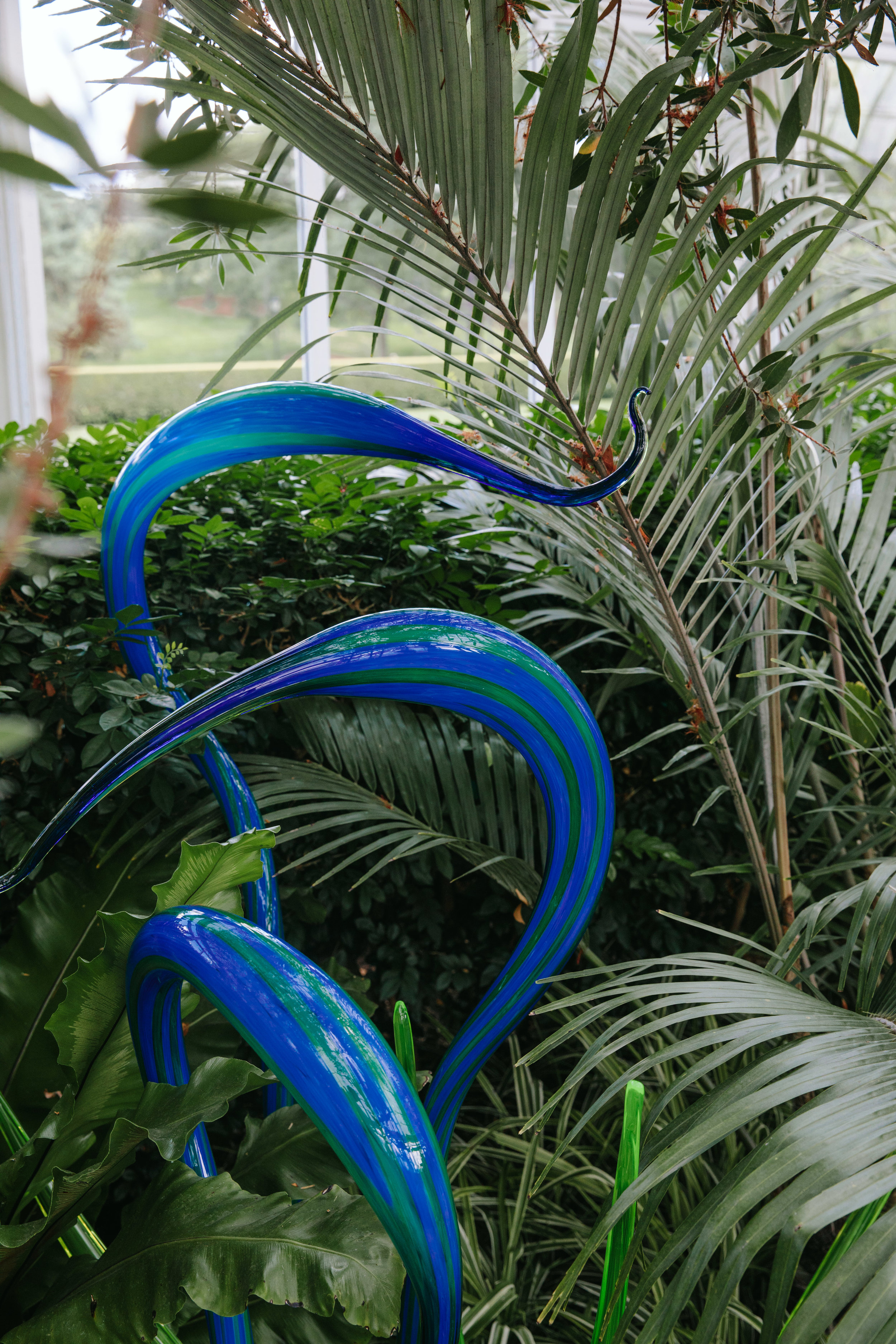 CHIHULY NY BOTANICAL GARDEN_BRIAN SAMUELS_AUGUST 2017-7310.jpg
