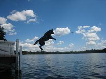 Marley Jumping