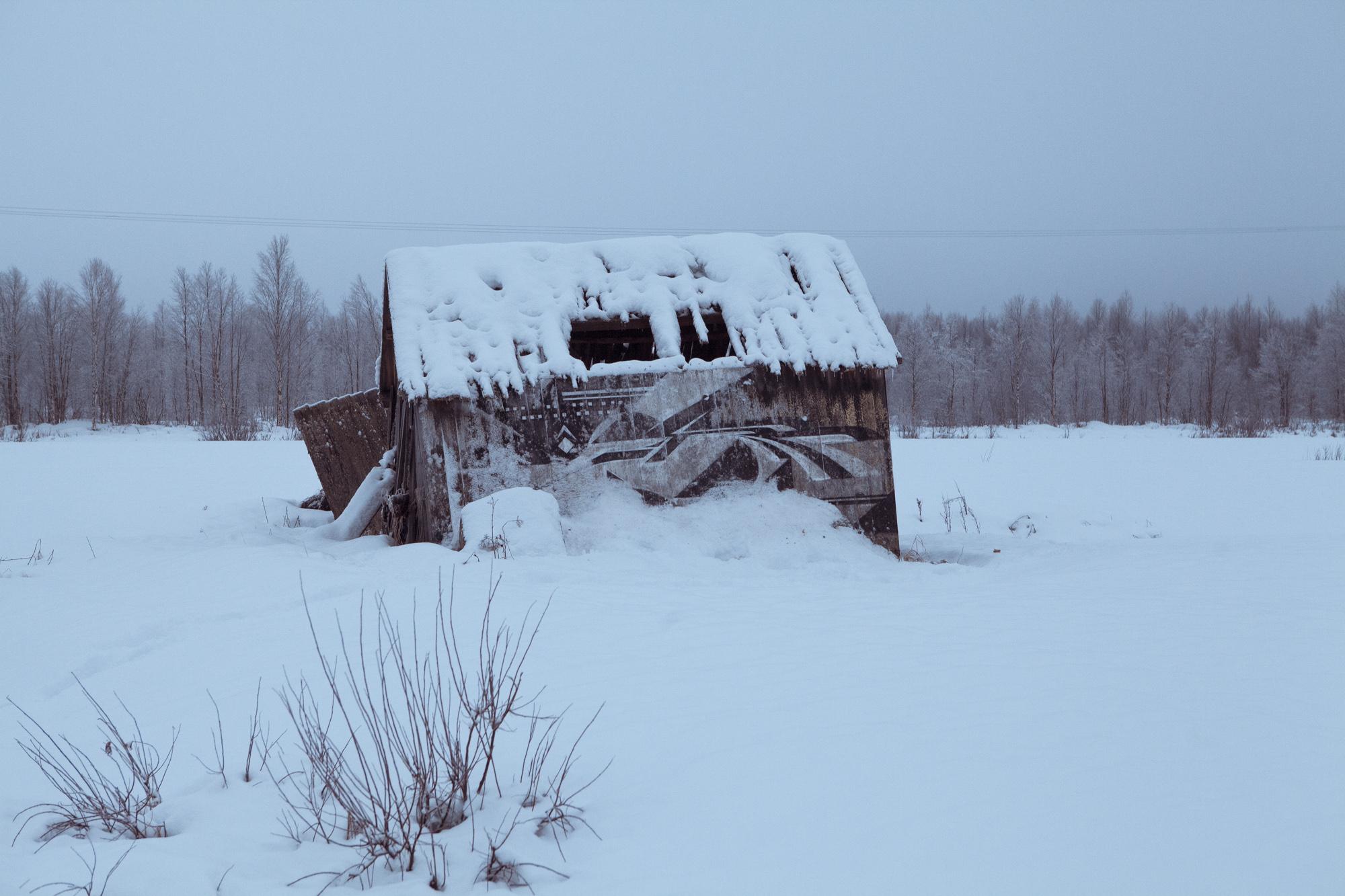 Rubin415-Arctic CIrcle-Sweden-2013.jpg