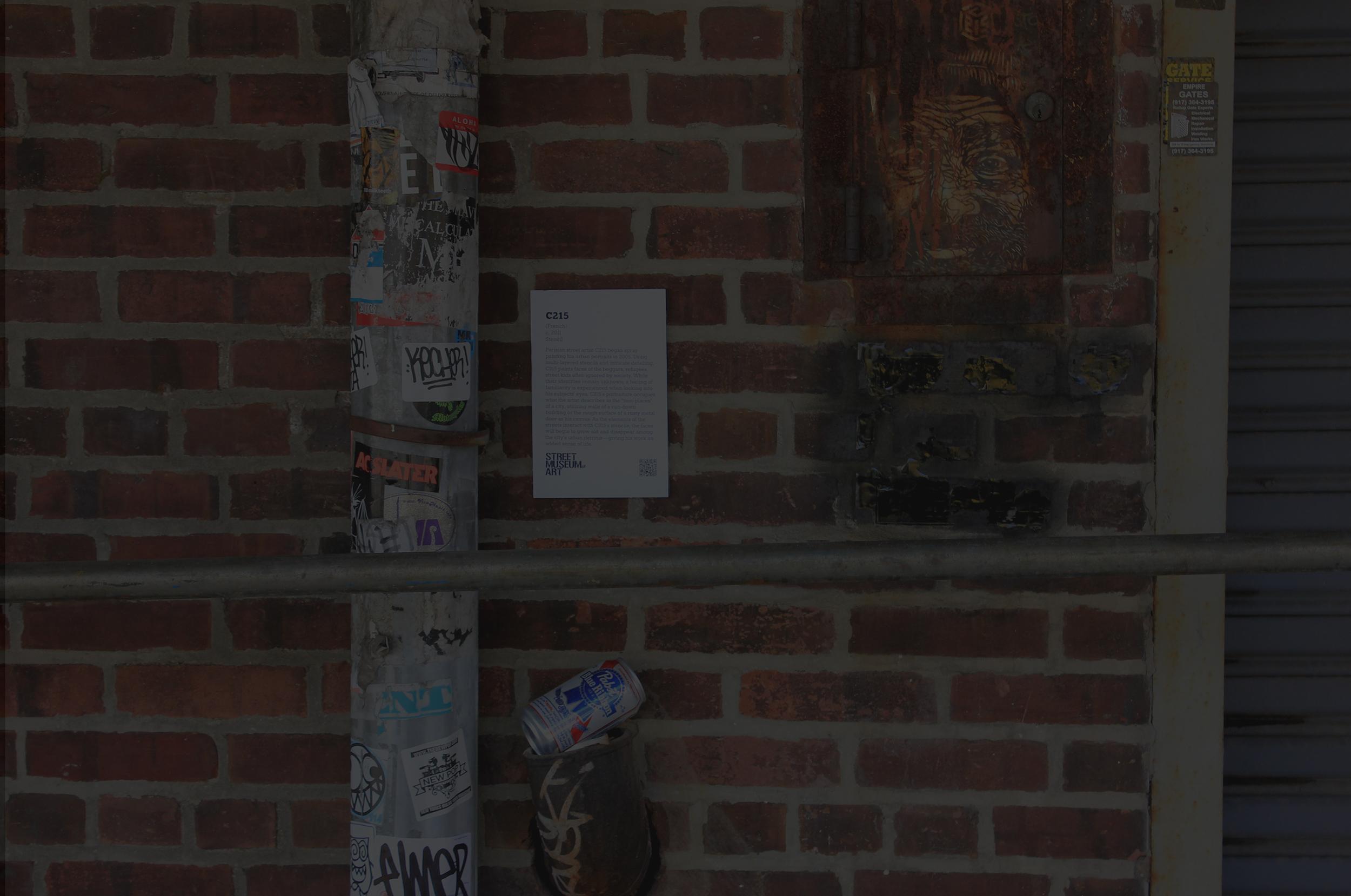 In Plain Sight — Brookyln