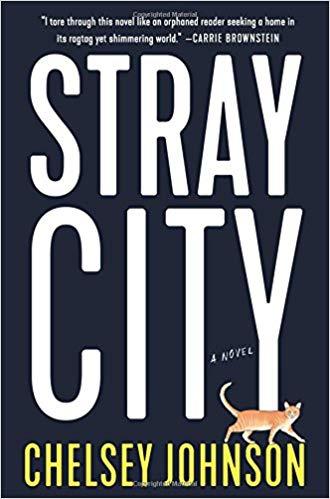 Stray City.jpg