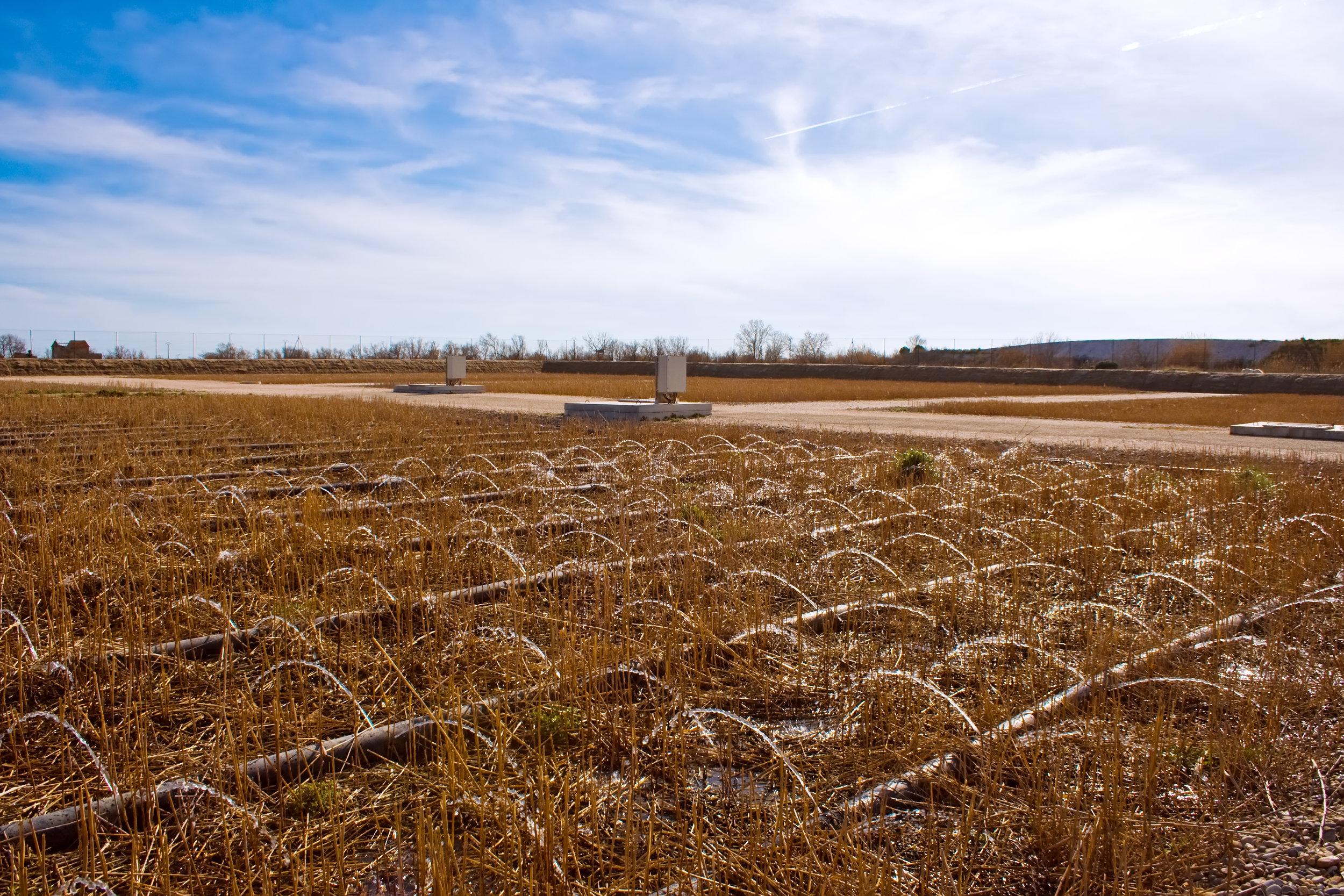shutterstock_75695698 treatment wetland.jpg