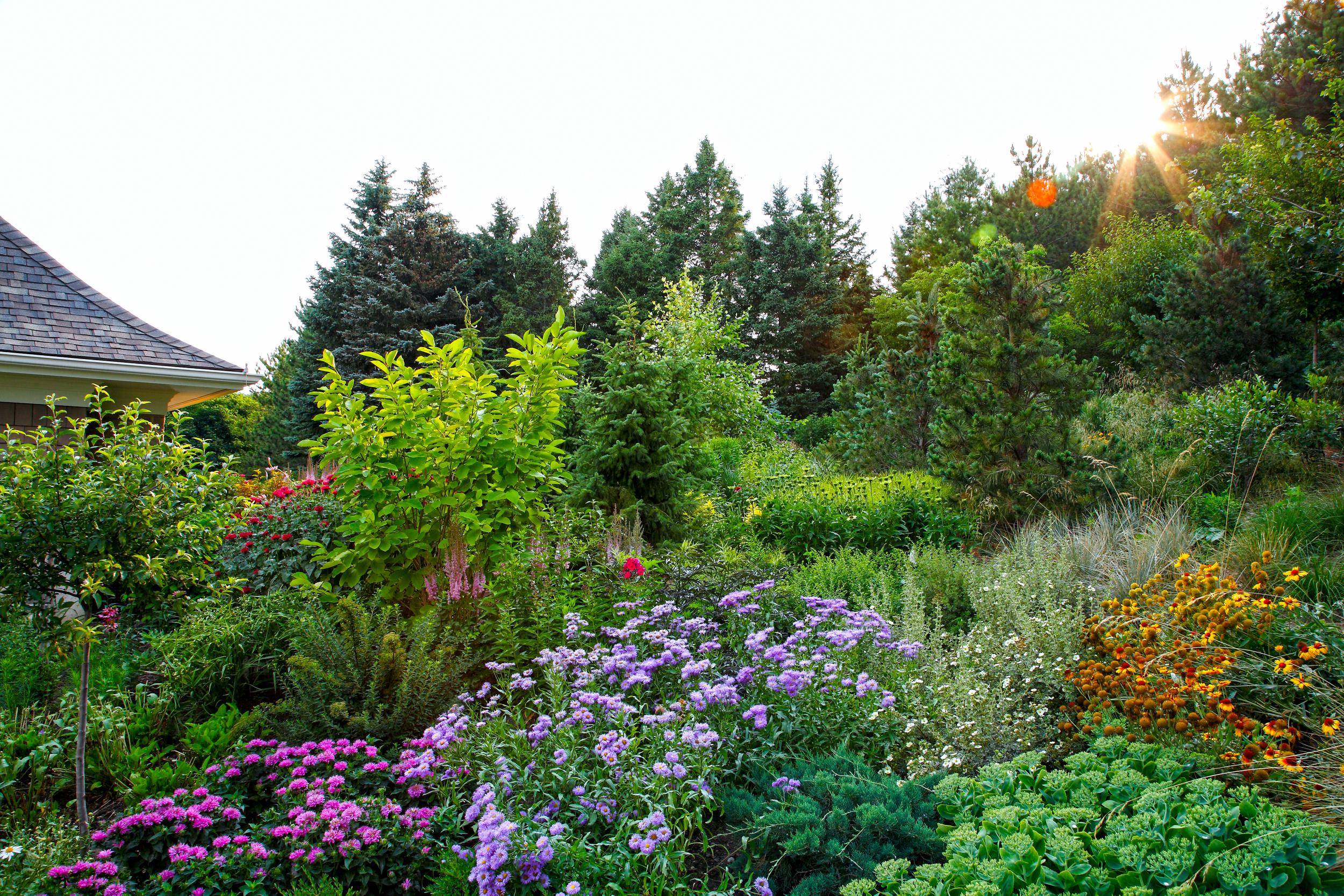 W21B._MG_1964 Rosen garden ls.jpg