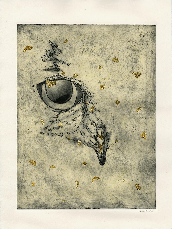 Gold Flecked Owl