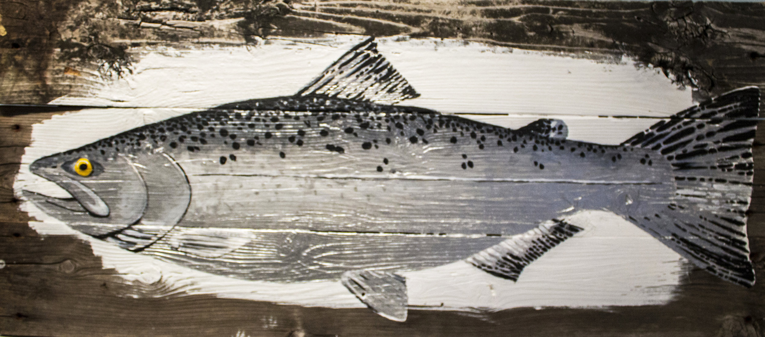 """ Gizzard Shad,""  Brian Barkwell"
