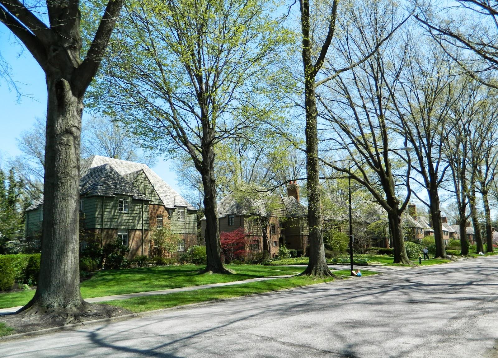 20130430095 E Cleveland Forest Hills Brewster Rd.jpg