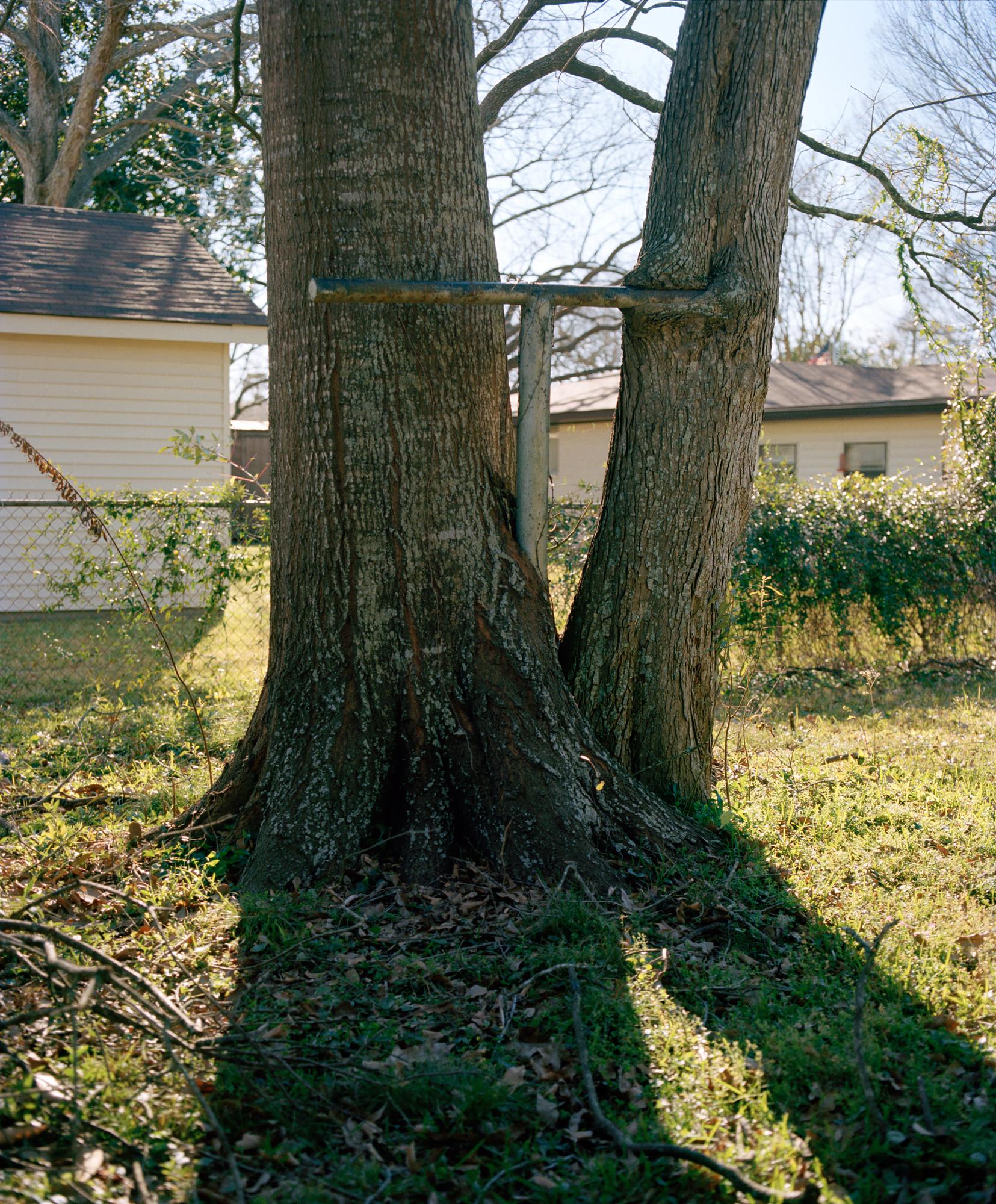 TreeCross-001_Print.jpg
