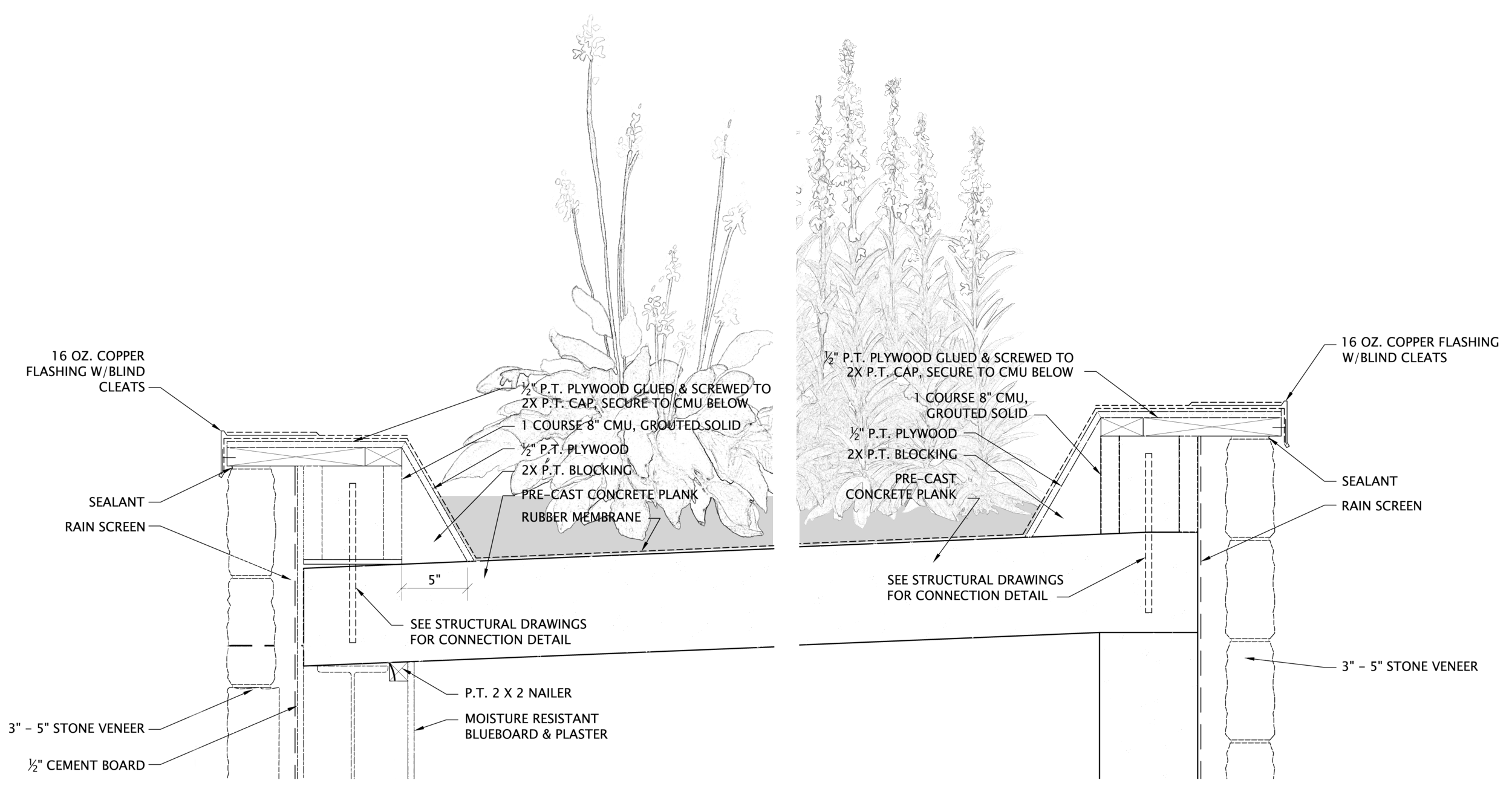 detail with plants.png