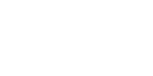 Nair-Web-Logo.png