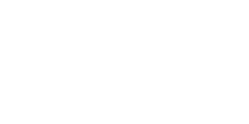 Save-Web-Logo.png