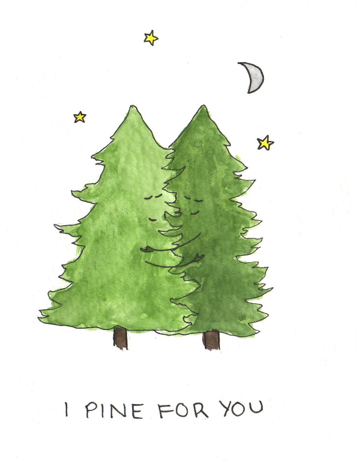 pine4u.jpg