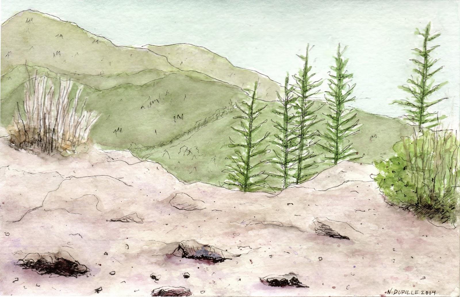 rattlesnake ridge, 2014
