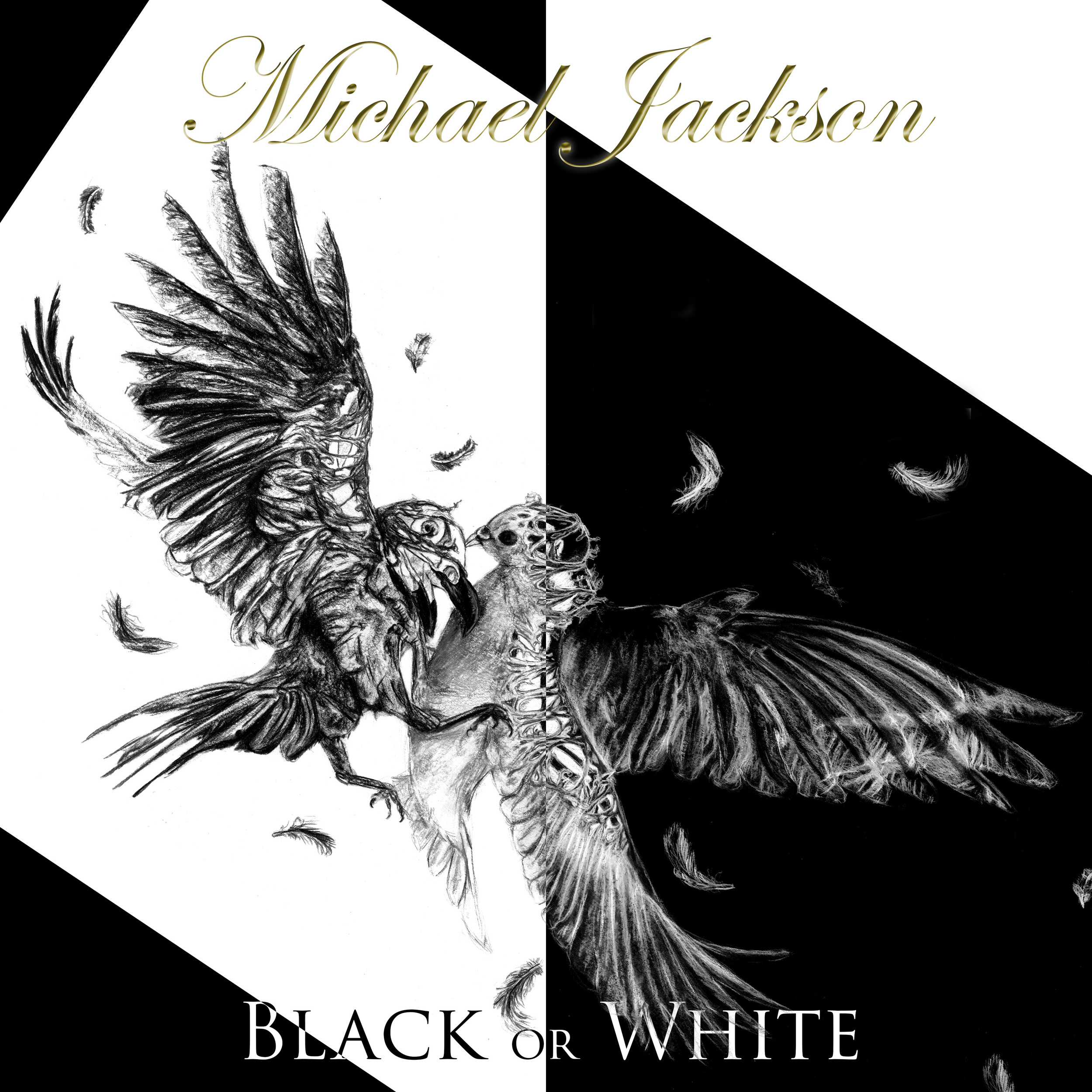 Black or White, 12' vinyl cover