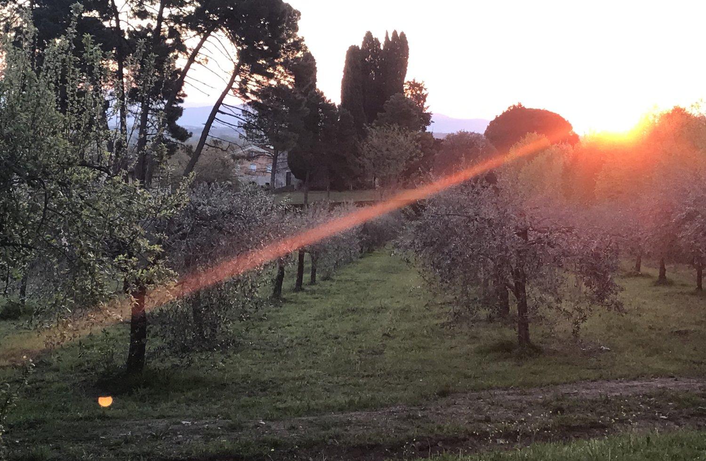 tuscany_0014.JPG