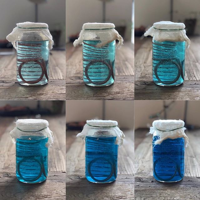 White vinegar + table salt + copper wire + time = BLUE 💙 ⠀⠀⠀⠀⠀⠀⠀⠀⠀ Day 3 ➡️ Day 36 of copper oxide ink development. It's a bit smelly, and a bit corrosive, and ultimately the acid will probably ruin any paper you put it on, but when it dries it leaves behind the most magical turquoise blue crystals, and the 8 year old in me says ✨SPARKLES!✨ and I'm in love. 😍 . . . . . #makeink #naturalpigments #naturalink #startwithwhy #theartofslowliving #thehappynow #doitfortheprocess #makersgonnamake #creativepreneur #risingtide #handsandhustle #creativityfound #moderncraft #calledtobecreative #organicmaterials #sustainablematerials #lowimpactliving #lowimpactmovement #createeveryday #livebeautifully #seekinspirecreate #ethicalliving #gowildlyandslow #pursuepretty #modernmaker