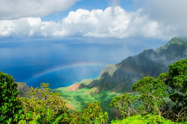 Hawaii Donor to Donor Jim Frederick.jpg