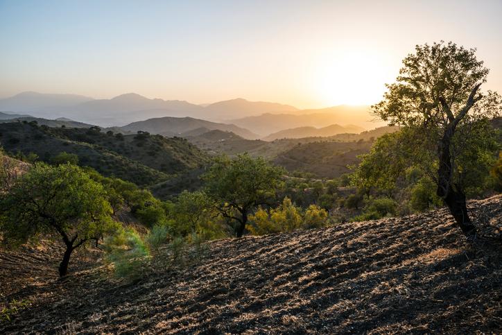 Mountain Spain - Suzanne