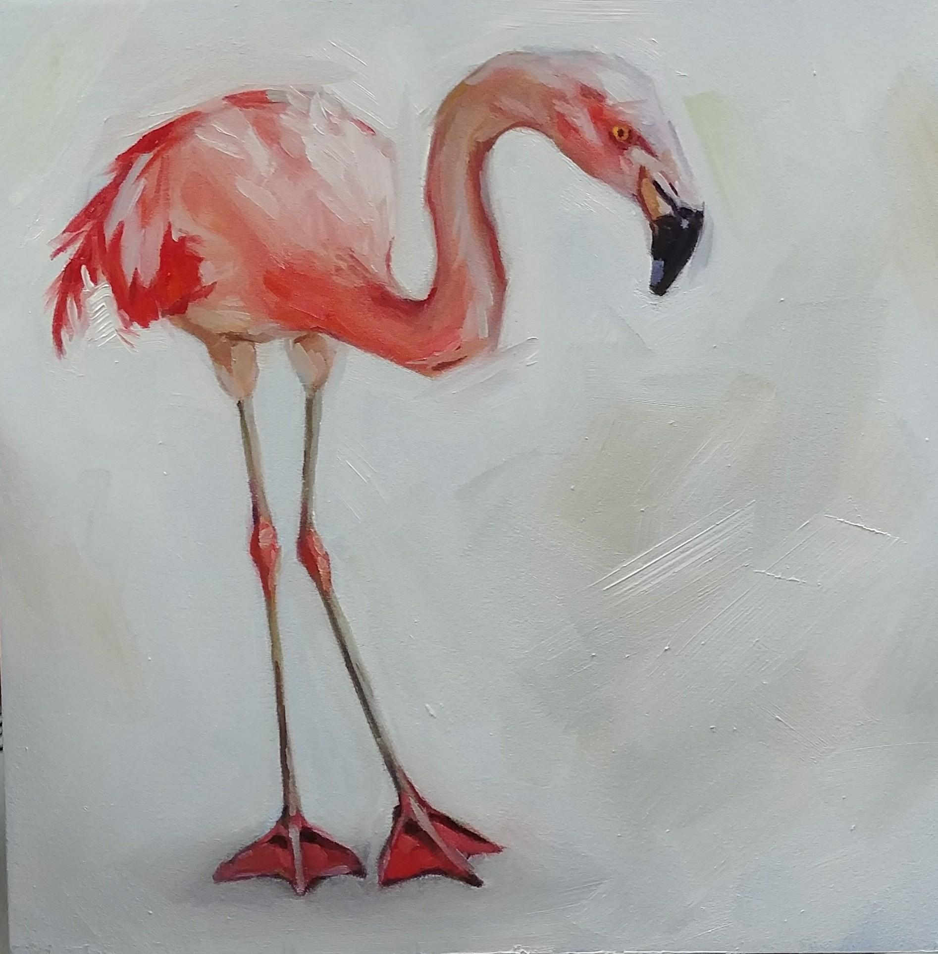 Flamingo, 8x8