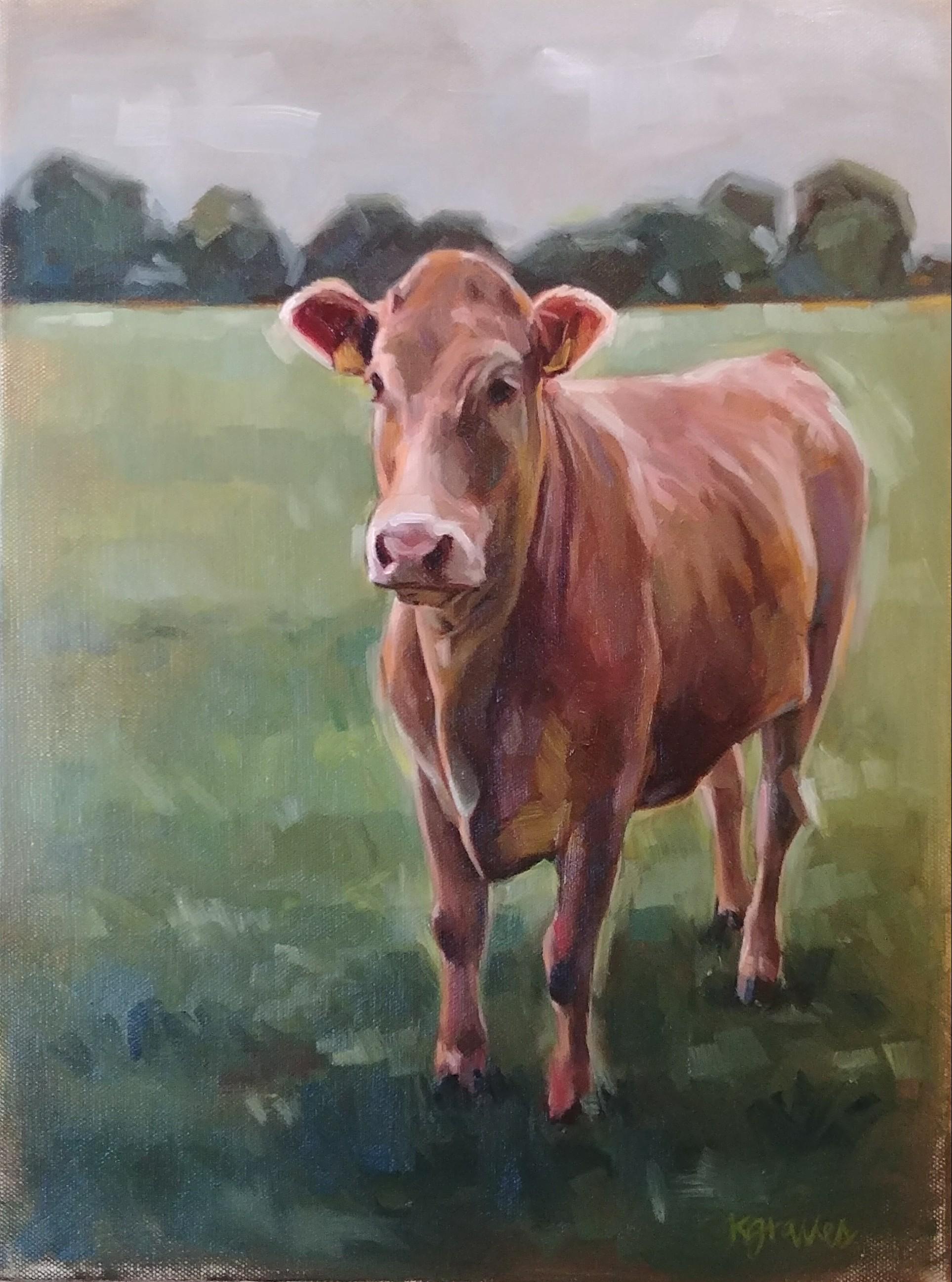 Ireland Cow, 12x16