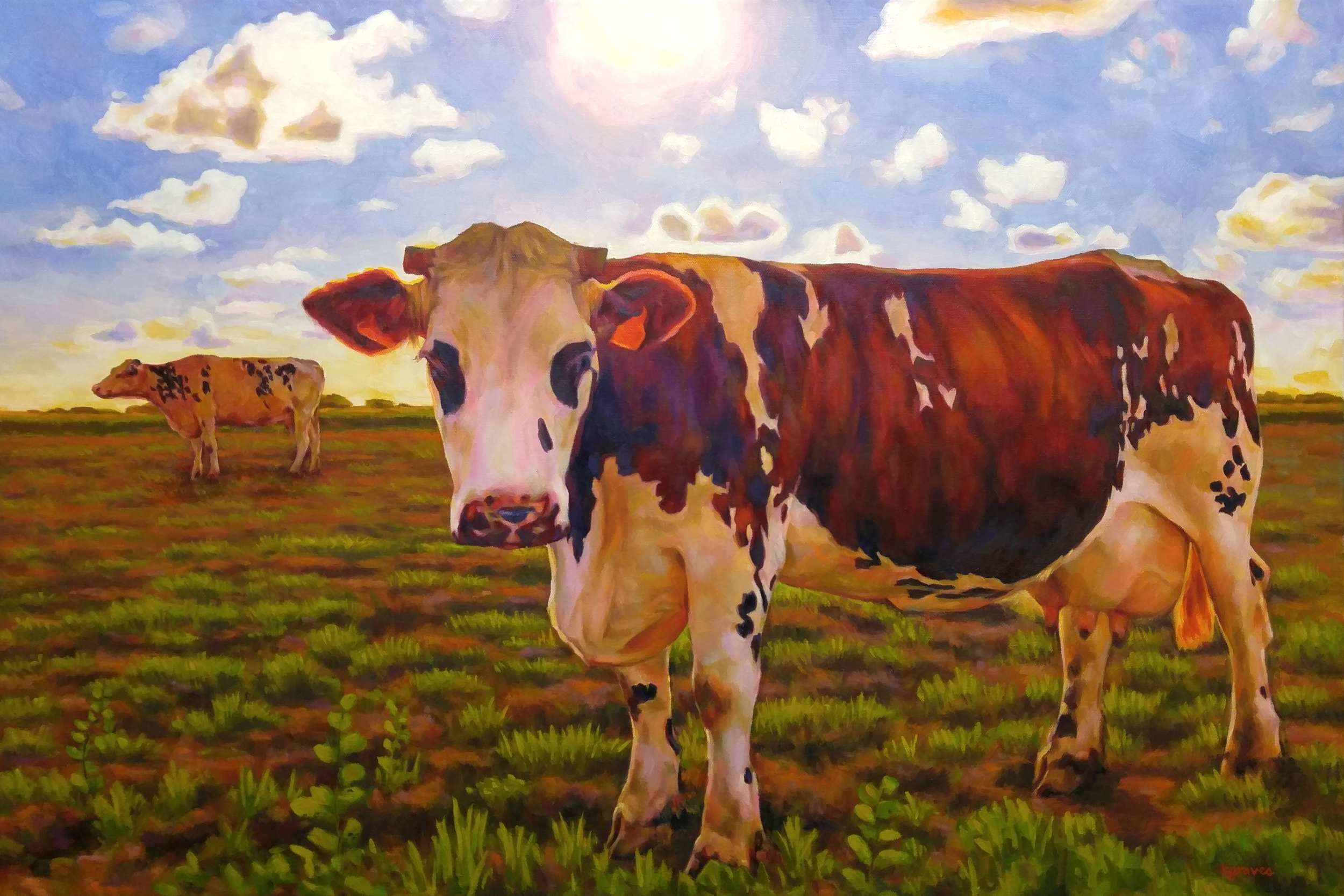 The Cows of France, 24x36