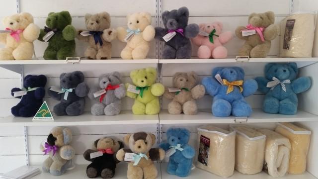 Tambo Teddy display 20160914sml.jpg