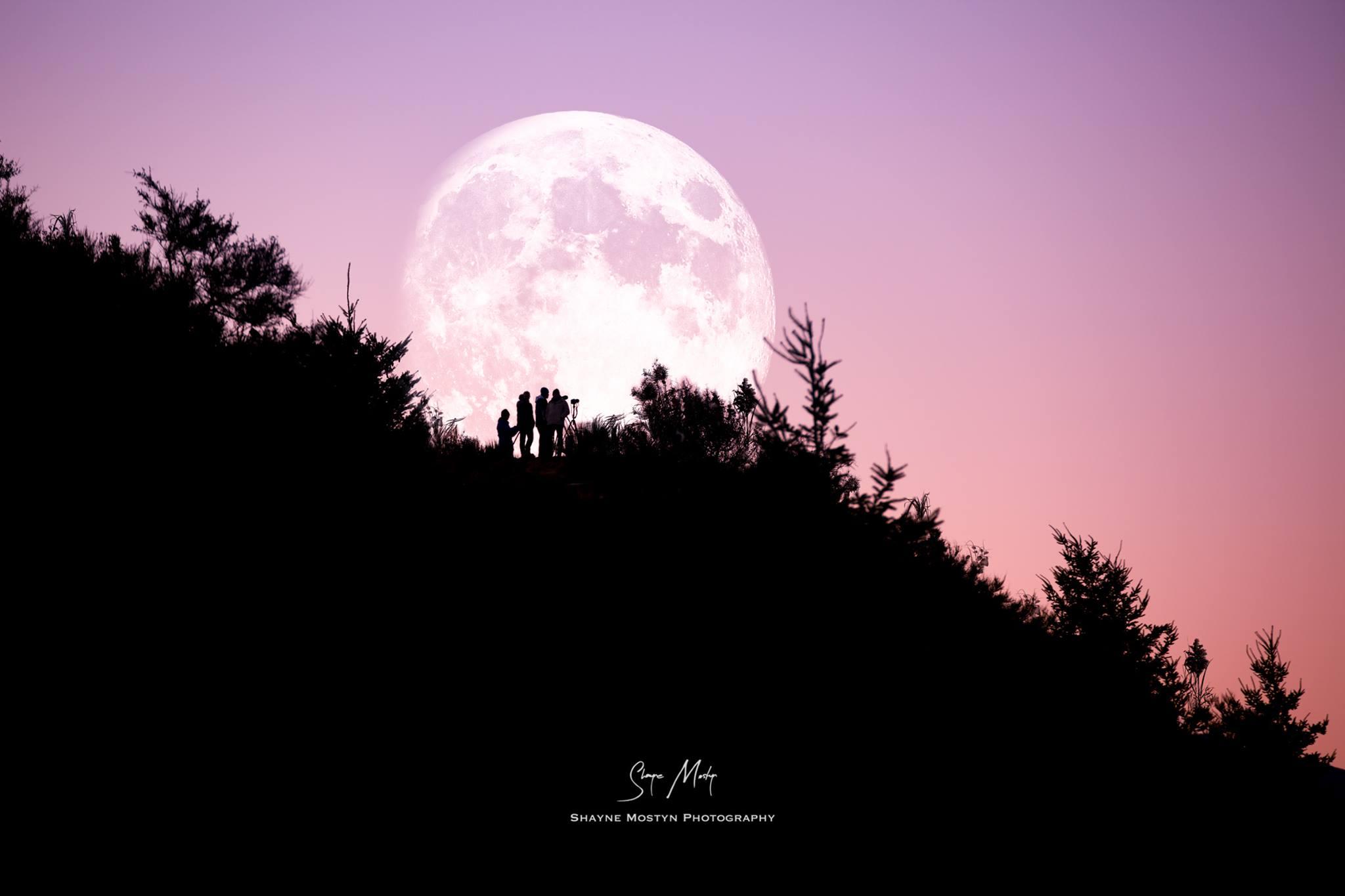 shayne mostyn moon group.jpg