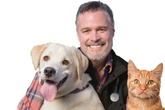 dr-bruce-with-cat-and-dog.png